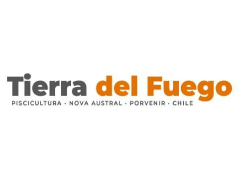 TIERRA DEL FUEGO S.A - WDesign - Diseño Web Profesional