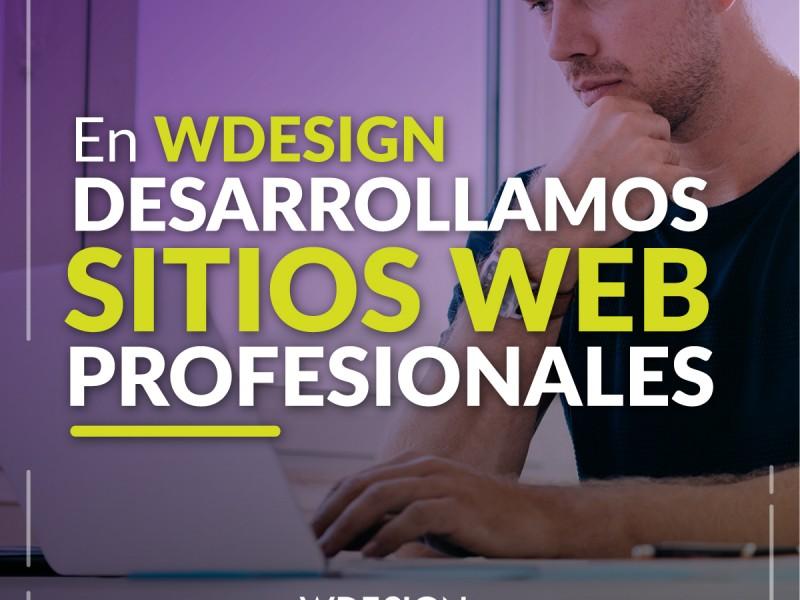 Master en Desarrollo Web Profesional - WDesign - Diseño Web Profesional