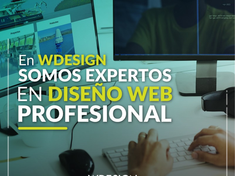 Master en Diseño Web Profesional - WDesign - Diseño Web Profesional