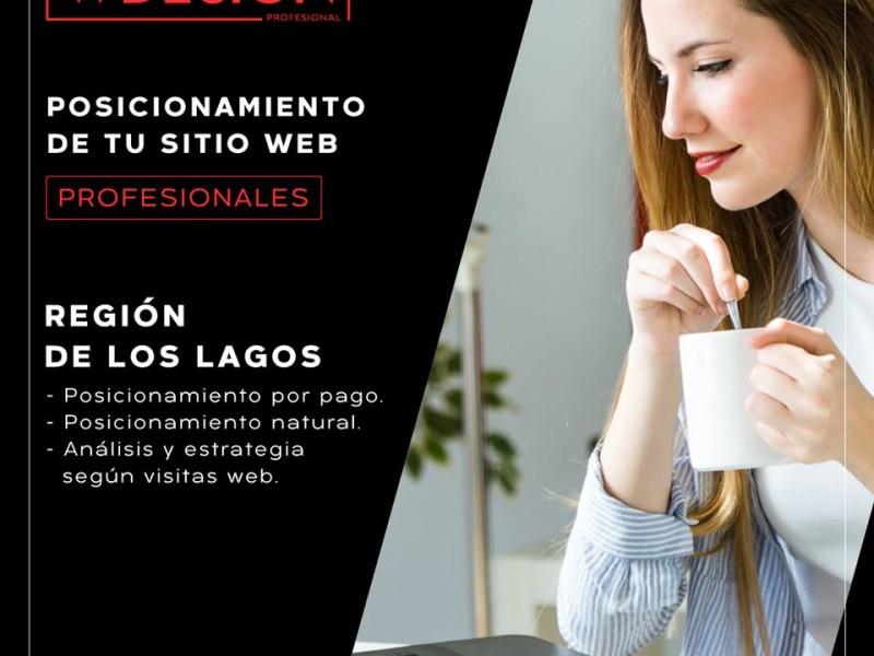 Posicionamiento Web y Páginas Web  en Puerto Montt y Puerto Varas - WDesign - Diseño Web Profesional