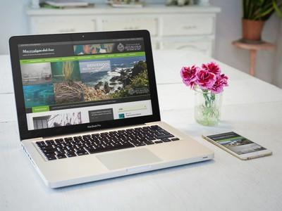 Macroalgas del Sur - WDesign - Diseño Web Profesional