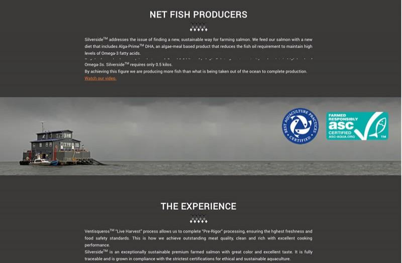 Silverside - WDesign - Diseño Web Profesional