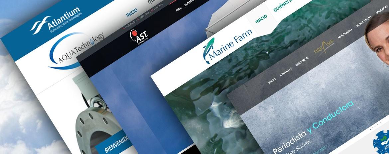 WDesign: Diseño Web Profesional